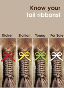 Tail ribbons for Equestrian Sports